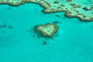 Bucear en la Gran Barrera de Coral. 100 cosas que hacer antes de morir, Ultimate Wild Trip
