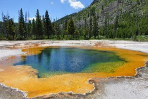 Visit Yellowstone Park, USA. 100 things to do before you die. My bucket list