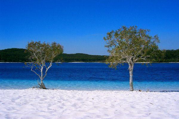 Fraser Island. Que ver en Australia y las mejores cosas que hacer en Australia