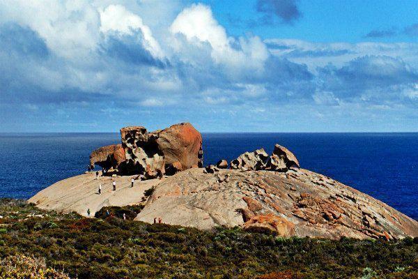 Isla Canguro. Que ver en Australia y las mejores cosas que hacer en Australia