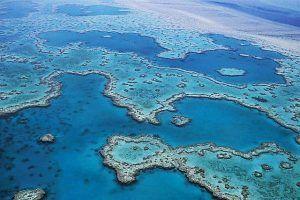 Gran Barrera de Coral. Que ver en Australia y las mejores cosas que hacer en Australia