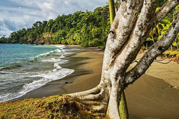 Corcovado. Que ver en Costa Rica