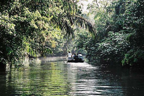 Tortuguero. Que ver en Costa Rica