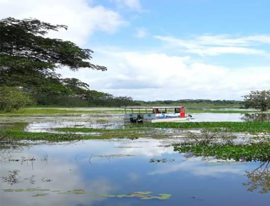 3.2.1 Viajes de lujo a Costa Rica